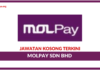 Jawatan Kosong Terkini MOLPay Sdn Bhd