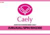 Jawatan Kosong Terkini Jurujual Di Caely
