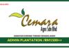 Jawatan Kosong Terkini Admin Plantation Di Cemara Agro