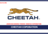 Jawatan Kosong Terkini Invoicing Clerk Di Cheetah Coporation