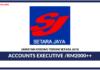 Jawatan Kosong Terkini Accounts Executive Di Setara Jaya