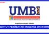 Jawatan Kosong Terkini Institut Perubatan Molekul UKM (UMBI)