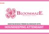 Jawatan Kosong Terkini Housekeeping Attendant Di Bloommaze Hotel